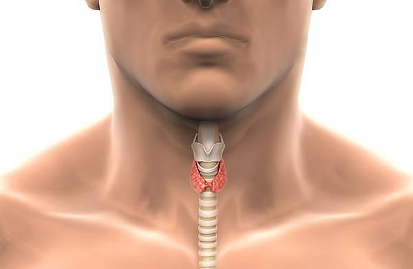 Niedoczynność tarczycy. Jednym zobjawów jest rosnąca masa ciała.