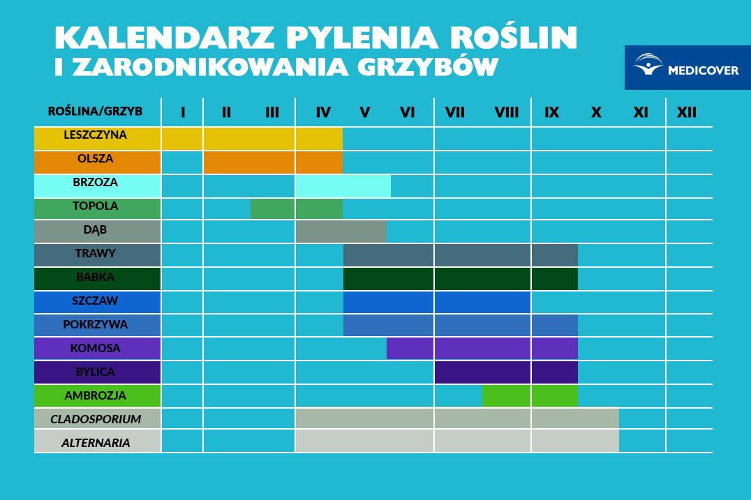 Kalendarz Pylenia Jak Uniknac Alergii Z Kalendarzem Pylenia