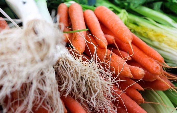 Dobrze zbilansowana dieta może uchronić nas przed infekcjami.