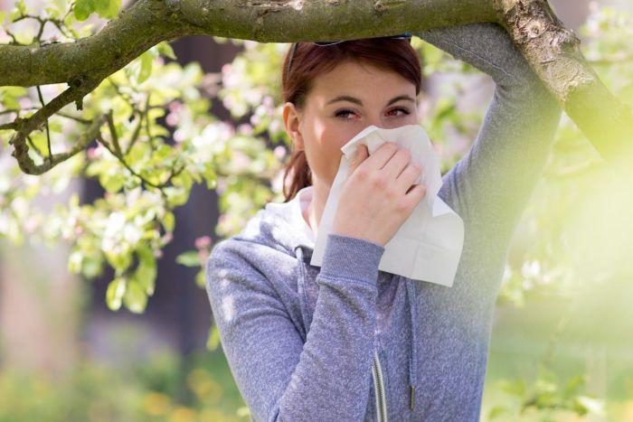 Alergia na pyłki roślin jest alergią sezonową